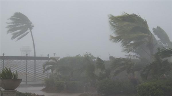 Sức gió mạnh nhất ở vùng gần tâm bão mạnh cấp 14 (150-165km/giờ), giật cấp 16.(Ảnh: Internet)