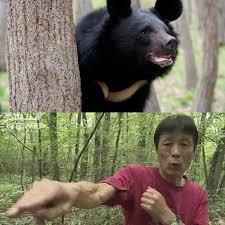 Dù có thế nào cũng không nên liều lĩnh tấn công con vật như vậy, quá nguy hiểm cho tính mạng, một viên cảnh sát cho biết.