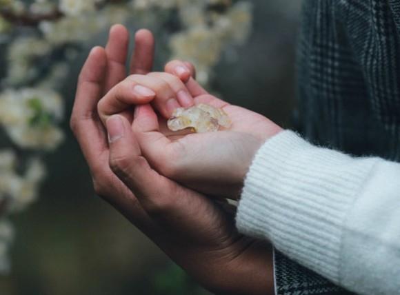 Hôn vào lòng bàn tay thể hiện sự tôn trọng và ngưỡng mộ tuyệt đối của con trai.