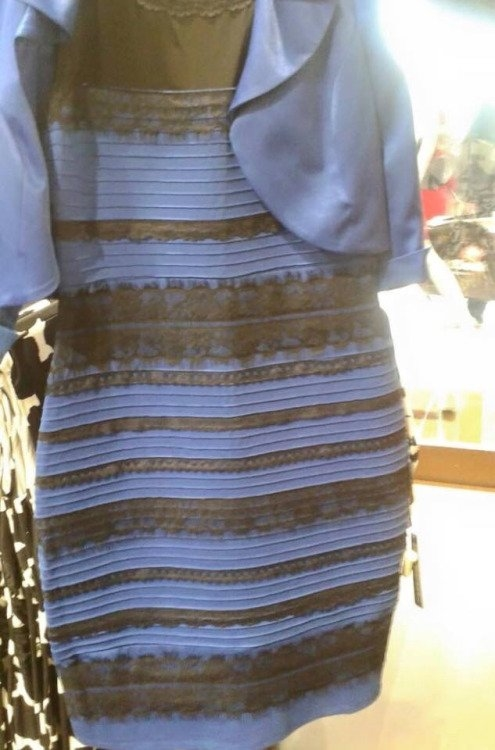 Bộ trang phục từng khiến cư dân mạng tranh luận nảy lửa vì có màu đen hay màu vàng trắng.