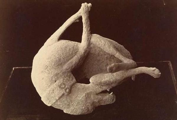 Khối đá giống với hình ảnh một con chó. Có lẽ trước khi chết, nó đang ở trong trạng thái giãy giụa.