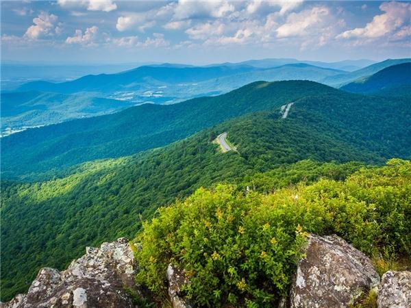 Công viên quốc gia Shenandoah, bang Virginia mang mọt màu xanh tuyệt diệu.Ảnh: Alamy.