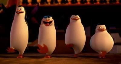 Có lẽ các chú cánh cụt này là fan trung thành của hoạt hìnhNhững chú chim cánh cụt đến từMadagascar.