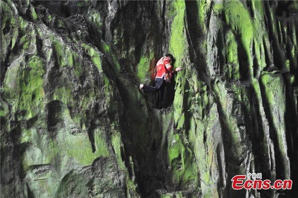 Chinh phục những vách đá cao đến hơn 100m.