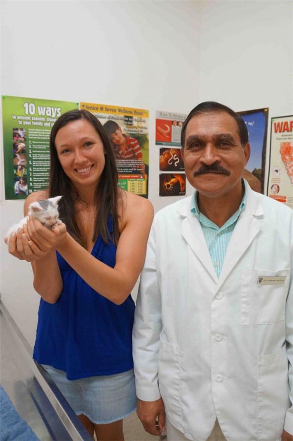 Bác sĩ Shazard cùng Paula và bé mèo bị kẹt trong ổ điện mà không ai tìm ra được nguyên nhân tại sao.