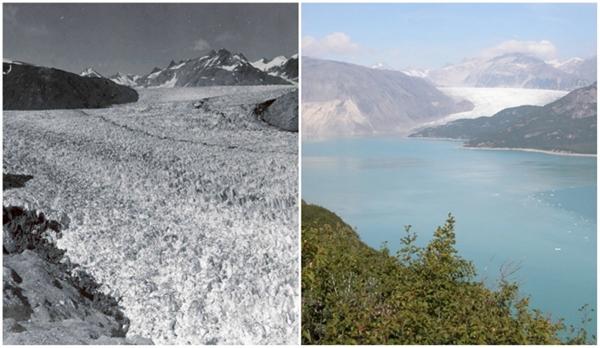 Sông băng Muir, Alaska (08/1941 - 08/2004)
