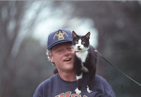 Ngoài ra ông còn nuôi một chúmèo cưng Socks