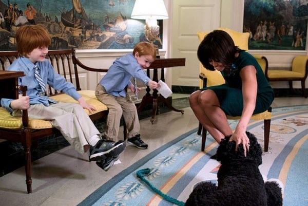 Đệ nhất phu nhân Michelle Obama bên thú cưng Bo.