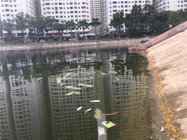 Đống rác thải gồm toàn bao cao su, băng vệ sinh,... nổi lềnh phềnh gây ô nhiễm mặt hồ Linh Đàm.