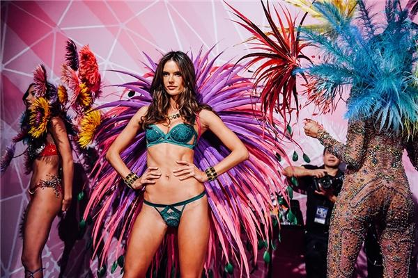 Được biết, Victoria's Secret 2016 sẽ là một trong những sự kiện giải trí được chờ đợi nhất năm nay. Show diễn quy tụ hơn 50 siêu mẫu hàng đầu thế giới bên cạnh đó là dàn ca sĩ biểu diễn rất hoành tráng, hứa hẹn tạo nên nhiều bất ngờ. Được biết, đêm diễn chính thức của chương trình sẽ diễn ra vào đêm 30/11 tới đây (giờ Paris, Pháp).