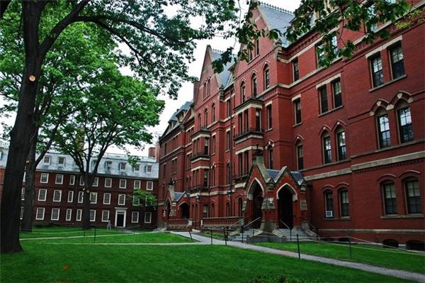 Đại học Harvard giữ vị trí thứ 6.