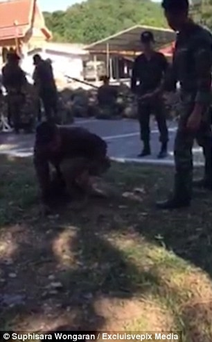 Cụ thể, trong đoạn video dài một phút rưỡi, một người đàn ông trẻ, ăn mặc như binh lính đang nằm co quắp trên đất với bộ dáng hết sức thảm thương.