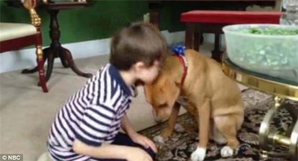 Cậu bé mắc chứng tự kỉ đã mở lòng hơn với thế giới nhờ có Xena.
