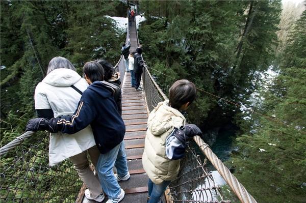 """Trông kiên cố hơn hẳn đa số những cây cầu ở trên nhưng cây cầu ở Lynn Canyon Park (Vancouver, British Columbia, Canada) vẫn đủ sức """"hù dọa"""" du khách."""