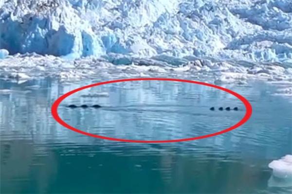 Rò rỉ clip rồng nước khổng lồ đang nhấp nhô trên sông băng Alaska?