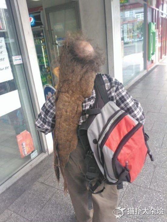 Phải chăng người đàn ông kia sợ rụng hết tóc nên mới không dám gội đầu?