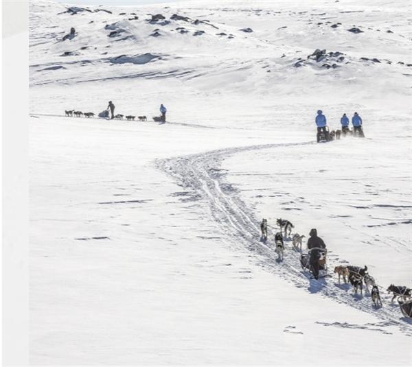 Để chinh phục Bắc Cực, phải điều khiển chó kéo xe. (Ảnh:Fjällräven Polar)