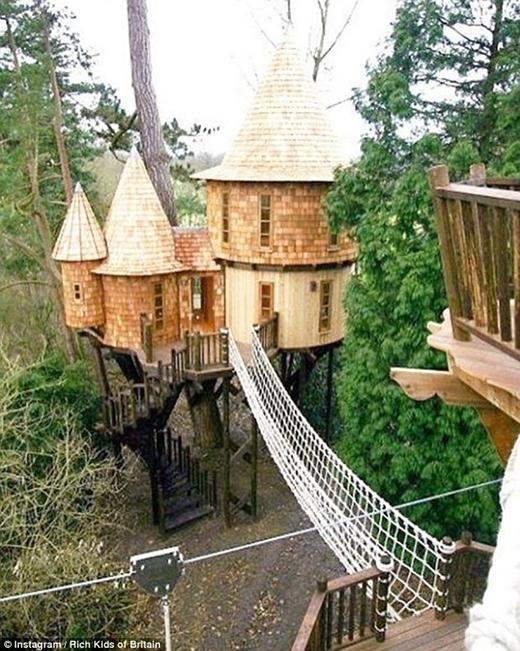 Trẻ con thường mơ ước xây nhà trên cây. Giới thượng lưu của những người trẻ tuổi Anh quốc đã hiện thực hóa ước mơ này với cái giá không dưới 250.000 bảng Anh.