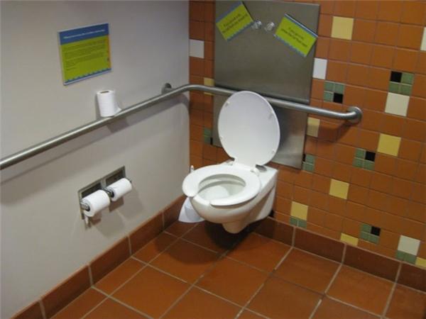 Tại Trung tâm Sinh thái Đô thị nằm tại Công viên Riverside ở Milwaukee, Wisconsin, nhà vệ sinh được lắp đặt với toàn đồ tái chế để giảm thiểu tối đa những tác động xấu đối với Trái Đất.