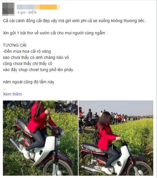 Phẫn nộ hình ảnh nữ phượt thủ thản nhiên phi xe máy qua vườn hoa cải