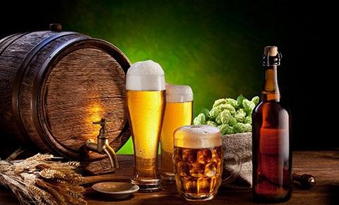 Hóa ra sản xuất rượu bia cũng là một ngành học hẳn hoi