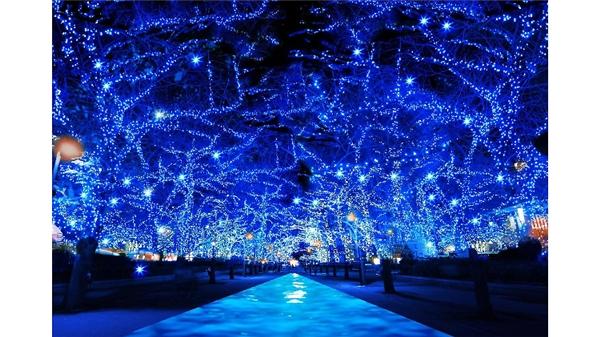 Choáng ngợp với cách trang trí Noel cực ảo diệu trên khắp năm châu