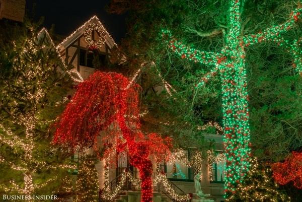 Hàng cây trước nhà được mắc đèn kín từ gốc lên đến ngọn.