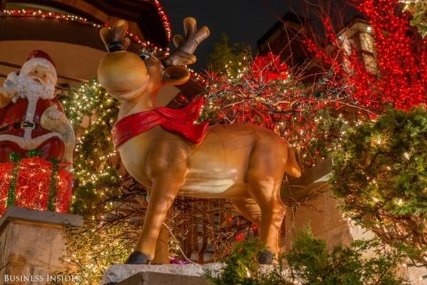 Tuần lộc – một nhân vật không thể thiếu trong mùa Giáng sinh.
