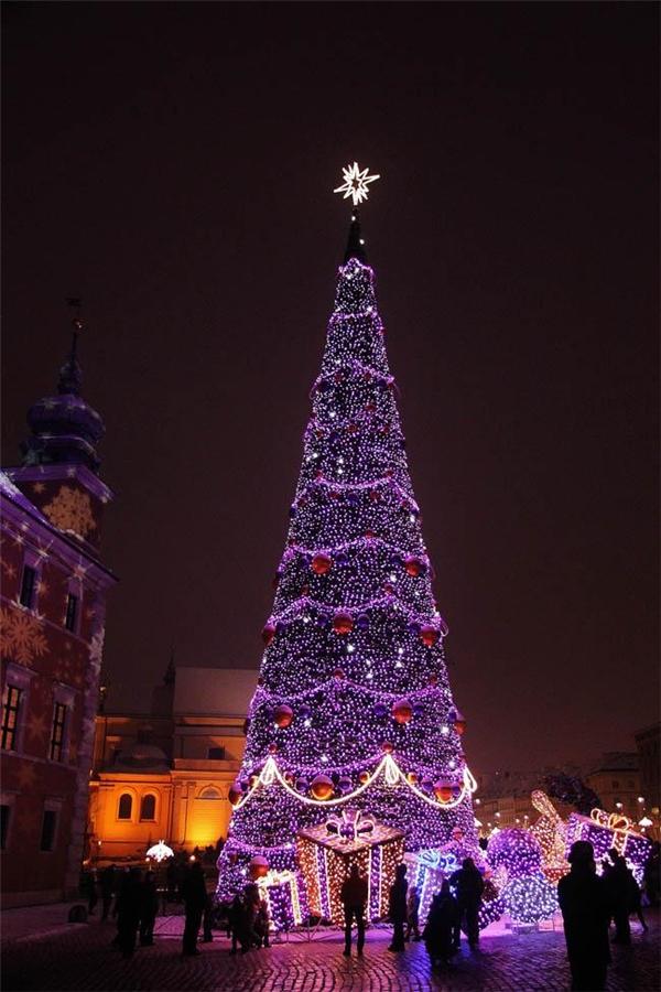 Giáng sinh đâu chỉ có sắc trắng và đỏ! Sắc tím cũng mang lại không khí lễ hội cho Warsaw, Ba Lan đấy thôi!