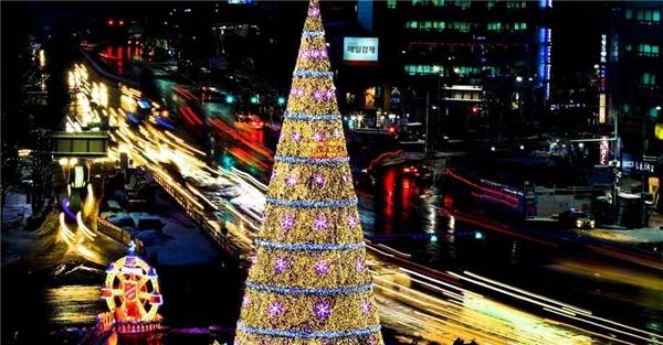Và cuối cùng là cây thông ởSeoul, Hàn Quốc.