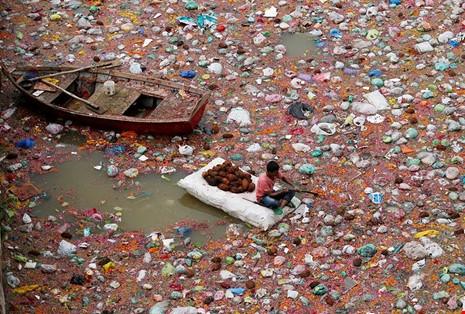 """Một người đàn ông đi nhặt lại những trái dừa được những người cúng lễ """"Dashama""""ném xuống dòng sôngSabarmati, Ấn Độ. (Ảnh: internet)"""