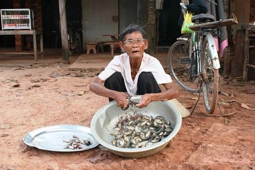 Dù tuổi đã 80 nhưng hằng ngày bà vẫn miệt mài với công việc mò tôm cámang ra chợ bán. (Ảnh: Zing)