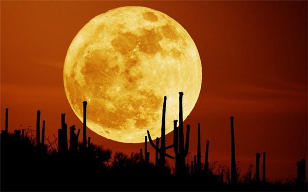 Đây sẽ là hiện tượng siêu trăng duy nhất của năm 2017, khi Mặt trăng nằm đúng vị trí đối diện với Trái đất và Mặt trời thì bị che phủ hoàn toàn. Ở khoảng cách gần với Trái đất nhất, Mặt trăng sẽ trông lớn và sáng hơn bình thường khá nhiều.