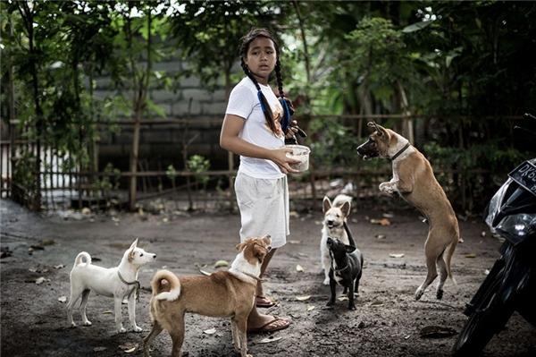 Cô bé 12 tuổi Agung Dewikhiến nhiều người cảm phục vì nhận nuôi những chú chó hoang trong làng.