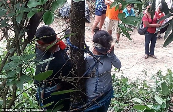 Ba mẹ con bị trói vào gốc cây nơi tập trung một loại kiến lửa chứa độc tính. (Ảnh: Radio Municipal Caranavi)