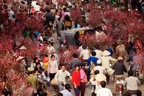 Mọi người nhộn nhịp rủ nhau đi chợ Tết.