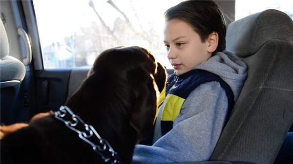 Clyde đã được huấn luyện, cảm nhận và ứng phó tốt với những cơn hoảng loạn bộc phát của bệnh nhân tự kỉ. Do đó, chú chó luôn có cái nhìn trìu mến và nhẹ nhàng đối với Tucker.