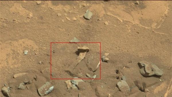 NASA tìm thấy xương người ngoài hành tinh trên sao Hỏa?