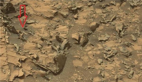 Một số hình ảnh về xương của người ngoài hành tinh chụp trên sao Hỏa. (Ảnh: internet)