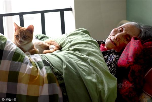 Hy vọngtừ nay, mọi đau khổ vàbất hạnh sẽ không còn lànỗi ám ảnh đối với hai bàcháu Lưu Lâm nữa.