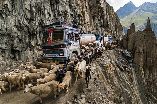Zoji La (Ấn Độ) là con đường dài 9mnối hai tỉnh Ladakh và Kashmir. Con đường này tuy nhỏ hẹp, cheo leo nhưng lại thường xuyên được sử dụng cho việc vận tải và chăn nuôi gia súc.