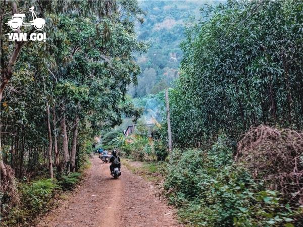 Một đoạn đường vào chân núi. Có vài đường đều đi đến nơi được, bạn nên hỏi người dân cho chắc để tránh đi lòng vòng nhé.