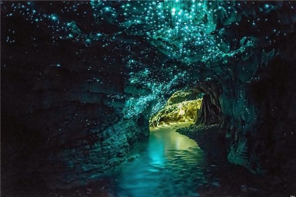 Hang động Ruakuri ở New Zealand khiến du khách như bước vào chuyện cổ tích với ánh sáng lấp lánh, huyền ảo của hàng nghìn con đom đóm.