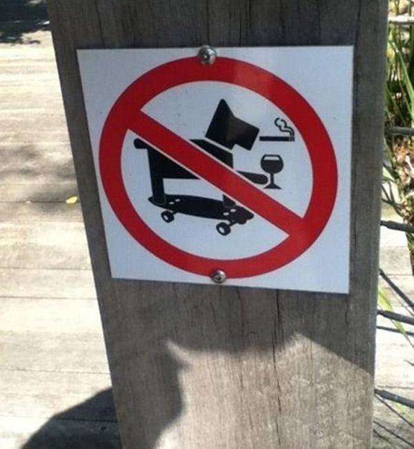Cấm chó hút thuốc, uống rượu và trượt ván