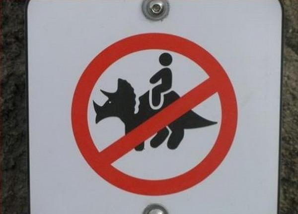 Cấm cưỡi tê giác