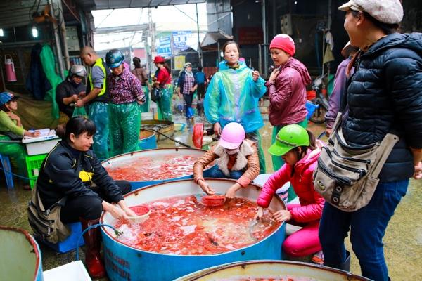 Chợ cá Yên Sở, Hoàng Mai, Hà Nội là một trong những chợ cá đầu mối lớn nhất tại Hà Nội hiện nay.