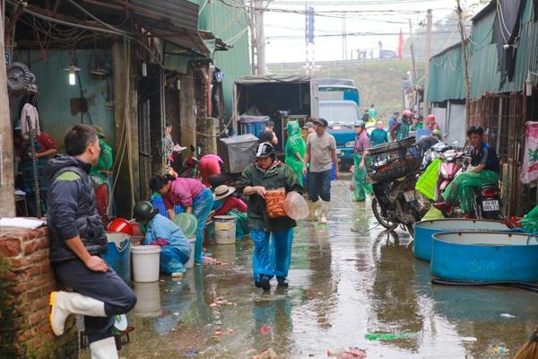 Chợ cá Yên Sở nhộn nhịp ngày tiễn ông Công ông Táo chầu trời