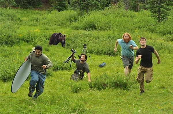 Chụp ảnh động vật hoang dã vô cùng nguy hiểm. Đây là tình huống cả ekip chụp ảnh bị một con gấu truy đuổi. (Ảnh: internet)