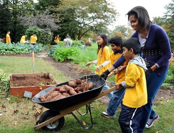 Không ngại xăn tay áo cùngcác học sinh đến từ trường trung học Bancroft and Kimball ở Washington thu hoạch nông sản ngay tại vườn Nhà Trắngngày 29/10/2009.