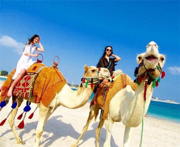 """Không chỉ du lịch trên biển, các """"cậu ấm cô chiêu"""" còn rất thích sang Trung Đông cưỡi lạc đà."""